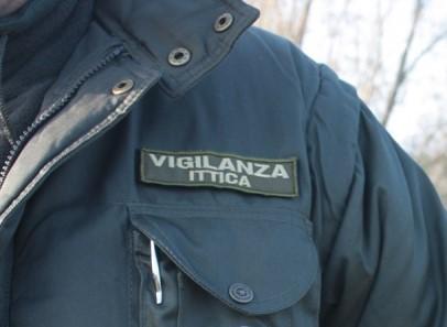 Immagine di guardia ittiva volontaria
