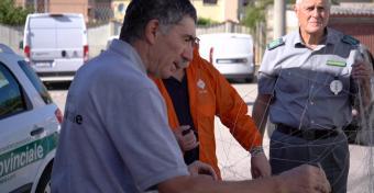 Lav e Polizia Provinciale contro il bracconaggio ittico