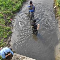 foto con scena di pesca